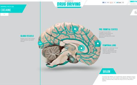 drug-driving-brain_rsz