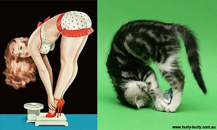pinupcats03