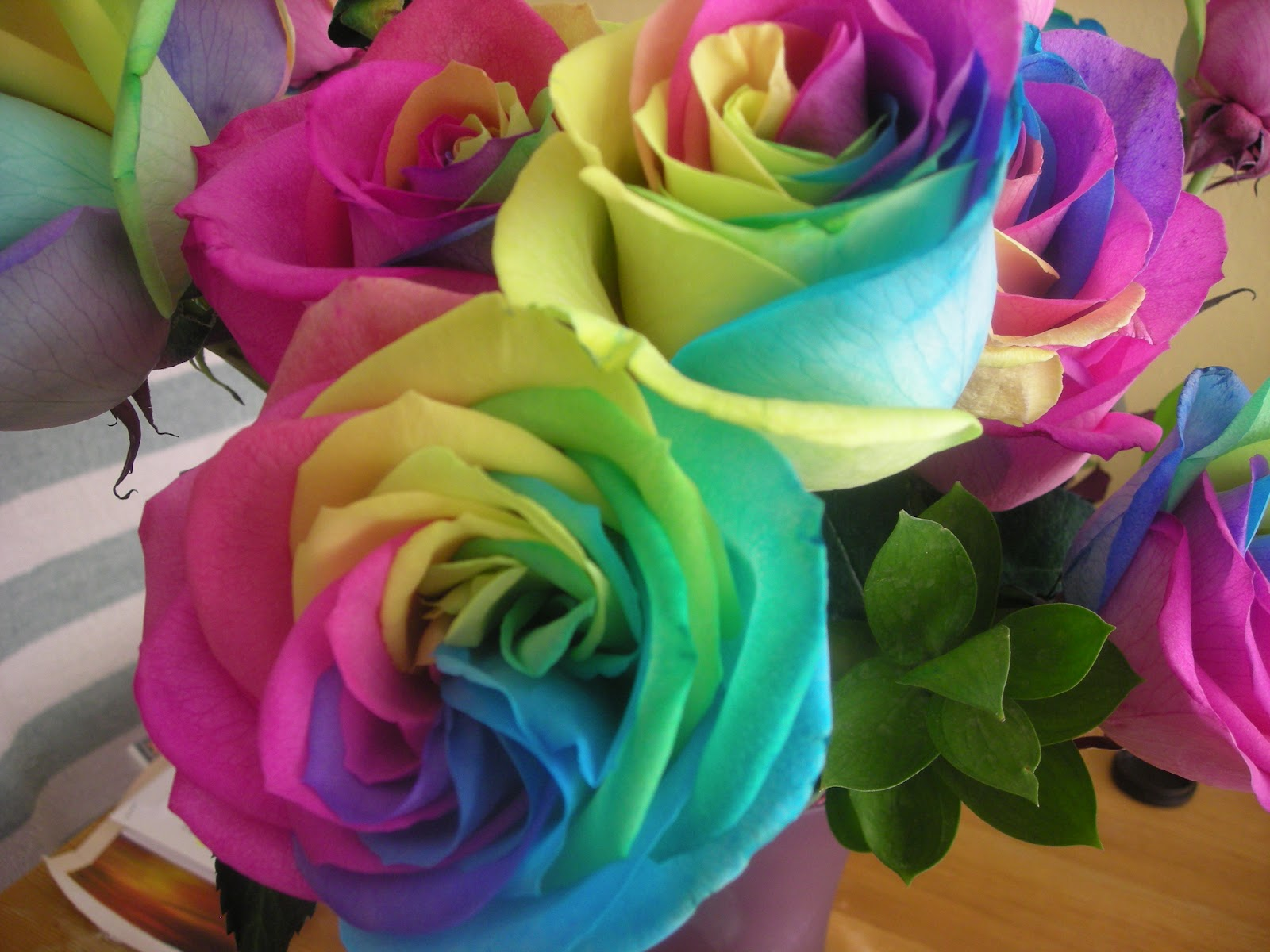 Free-Desktop-Wallpapers-of-Rainbow-Roses