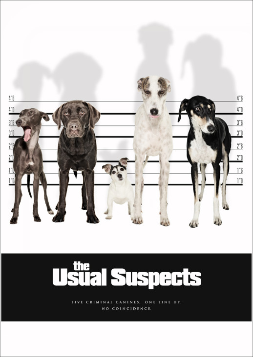 6.USUAL-SUSPECTS_f2-518x732