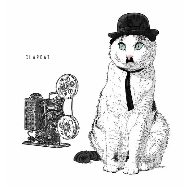 Chapcat