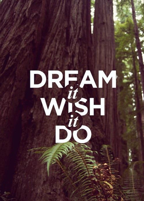 Dream it Wish it Do