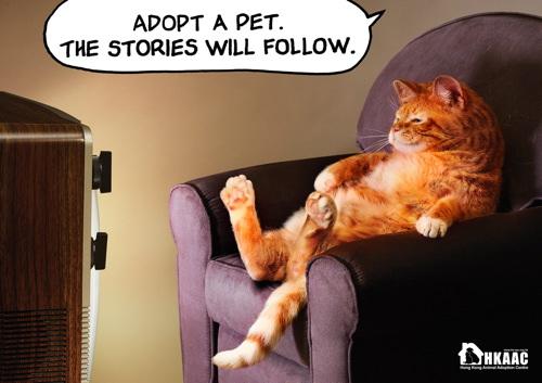 HKAAC Pet Adoption Service